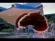 Jaws 19 Anniversary