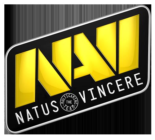 The Navi Logo