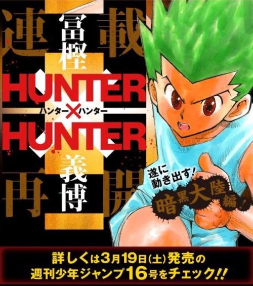 hunterxhunter_hiatuscover