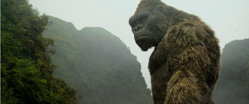 Kong:SkullI Island MelanKONGy
